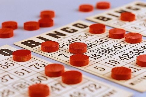 Bingo1-630x419.jpg