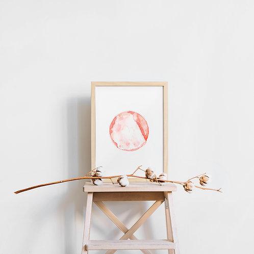 Single Embryo Art