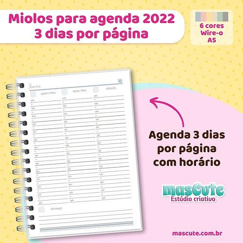 Miolo para agenda 2022 | 3 dias por página | Permamente | A5