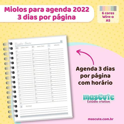 Miolo para agenda 2022 | 3 dias por página | Datada | A5