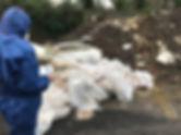 Dumped Asbestos.jpg
