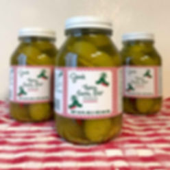Jan's-Pickles-Image-1b.jpg