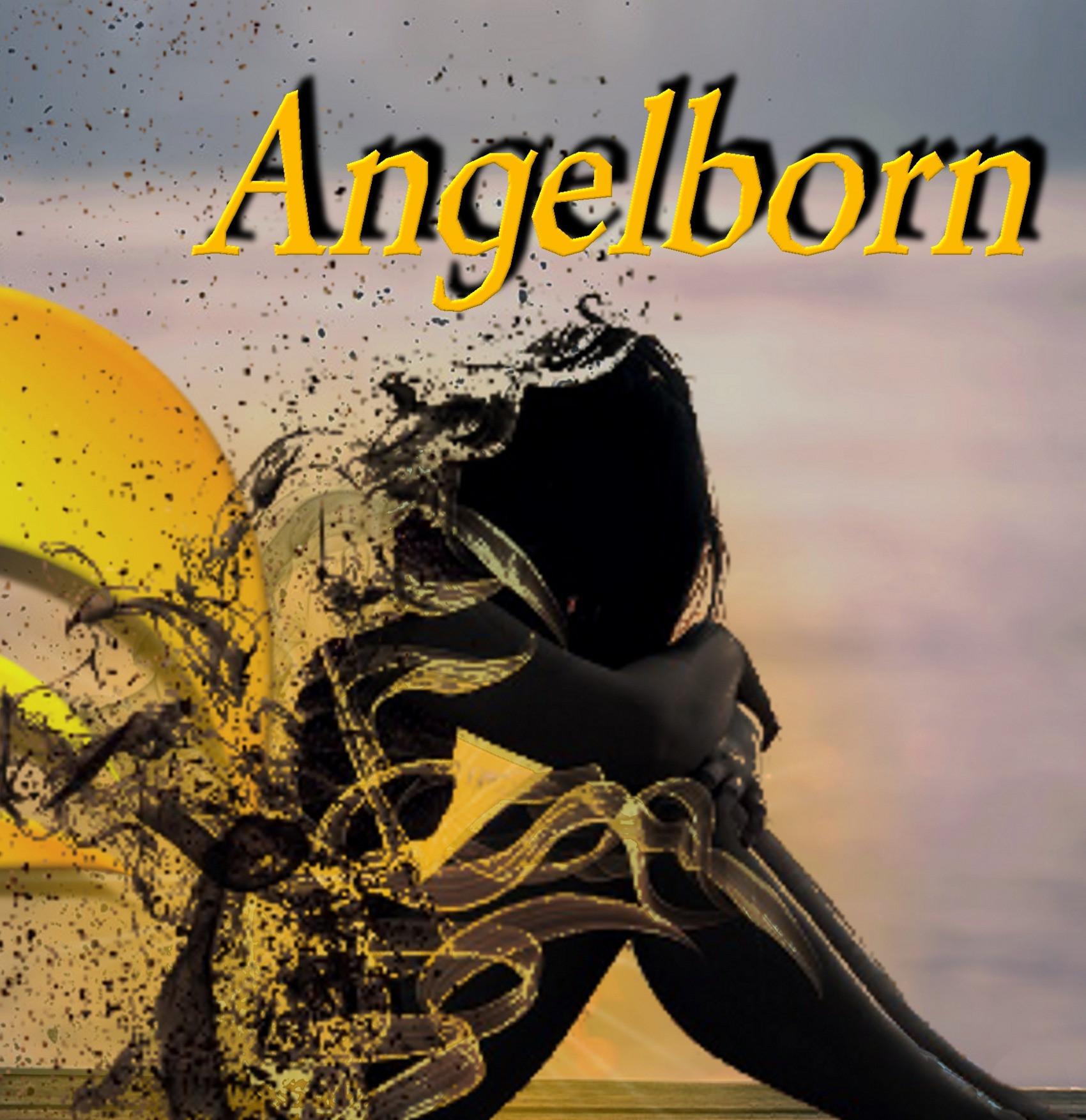 Angelborn book signed