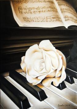 Piano e Rosa