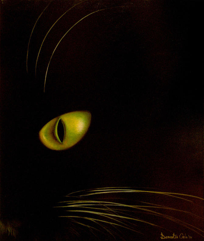 Cat in the darkness