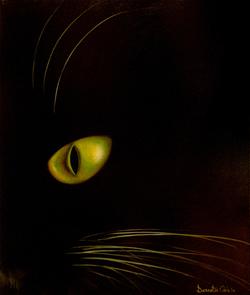 Gatto nel buio