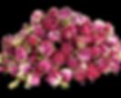 boutons-de-rose-damas.png