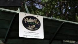 Plainville Farms Turkey