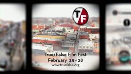 """True/False - """"Miniature City"""""""