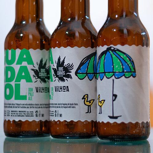 Guarda-sol (Sabro DDH Pale Ale)