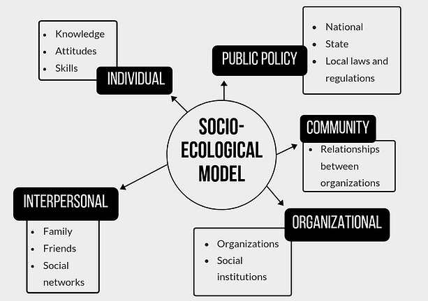 Socio-ecological Model.png