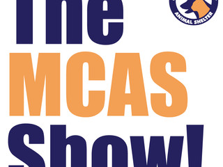 It's the MCAS Show! Our first facebook live show.