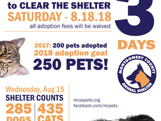 Just 3 Days until Clear the Shelter!