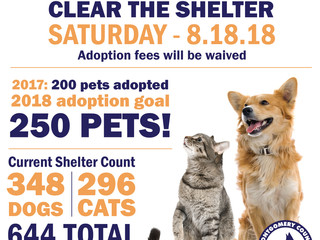 Tomorrow is Clear the Shelter Day!