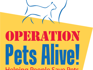 Montgomery County Animal Shelter (MCAS) has named Operation Pets Alive (OPA) as its 501(c)3 non-prof