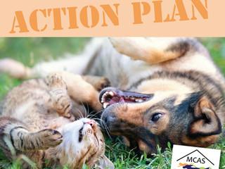 MCAS Action Plan - Short-, Medium- & Long-Term Goals for the animals