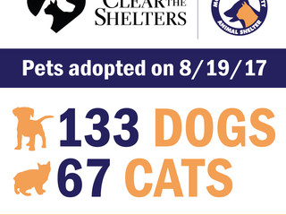 Clear the Shelters Results!