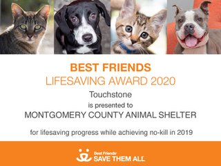Montgomery County Animal Services receives prestigious award from national leader in no-kill movemen