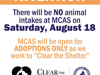 No Animal Intakes on Saturday, August 18