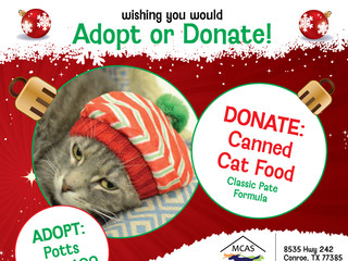 12 Pet Wishes of Christmas! DAY 2: Our homeless pets are wishing you would adopt or donate this holi