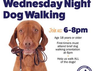 It's back! Wednesday Night Dog Walking!