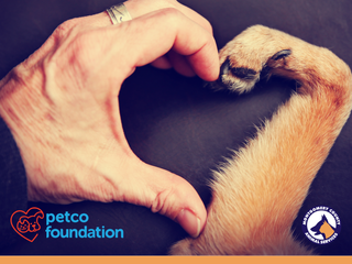 Montgomery County Animal Services Honored at the Petco Foundation Lifesaving Awards