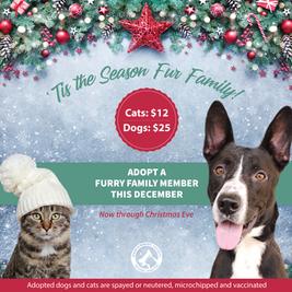 'Tis the Season Fur Family!