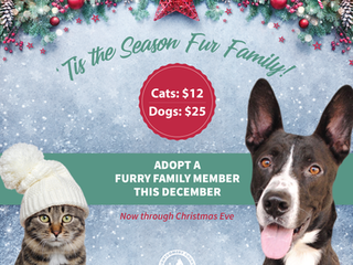 'Tis the Season Fur Family!