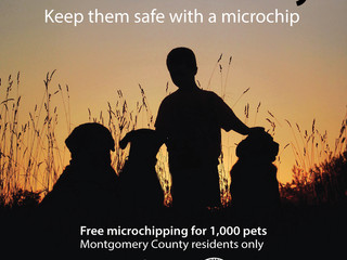 Pets are family. Keep them safe with a microchip! Free microchipping!