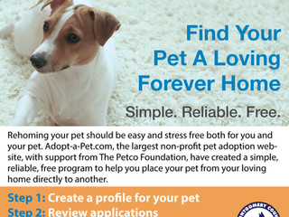 Need to rehome your pet? Here's a new, better way.