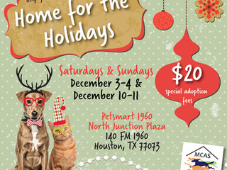Help give a foster pet a fur-ever home for the holidays! Petsmart 1960 adoption events!