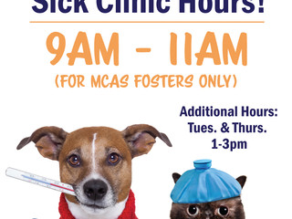 Saturday sick clinic hours!