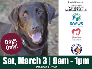 Healthy Pet Day in Willis: March 3