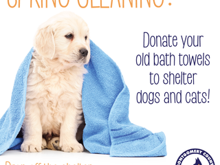 Bring us your old bath towels!