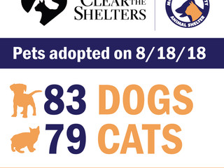 162 pets adopted at Clear the Shelters!