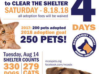 4 Days until Clear the Shelter!