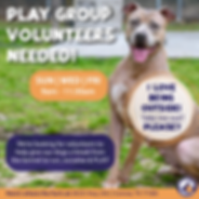 Play Group Volunteers - 4.26.19-01.png