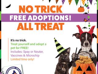 It's no trick. We've got FREE ADOPTIONS!