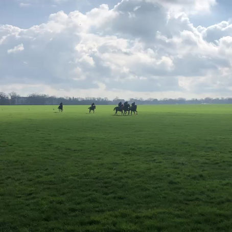 Un matin à l'entraînement ... #lesaigles - paysage féérique et sensations fortes !