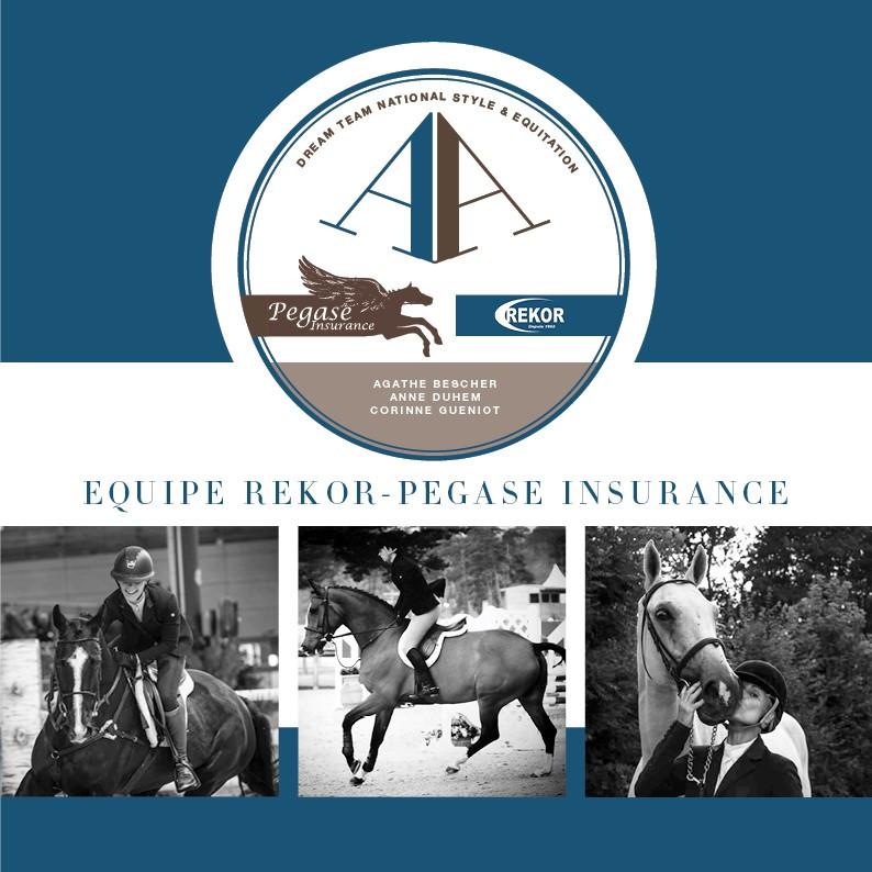 Pegase Insurance National Style Equitation