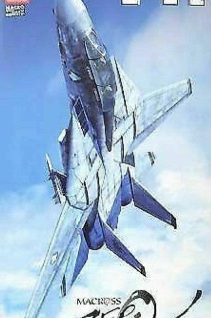 1/72 Macross Zero: F-14