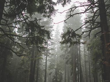 Jeseníky trek a kempování