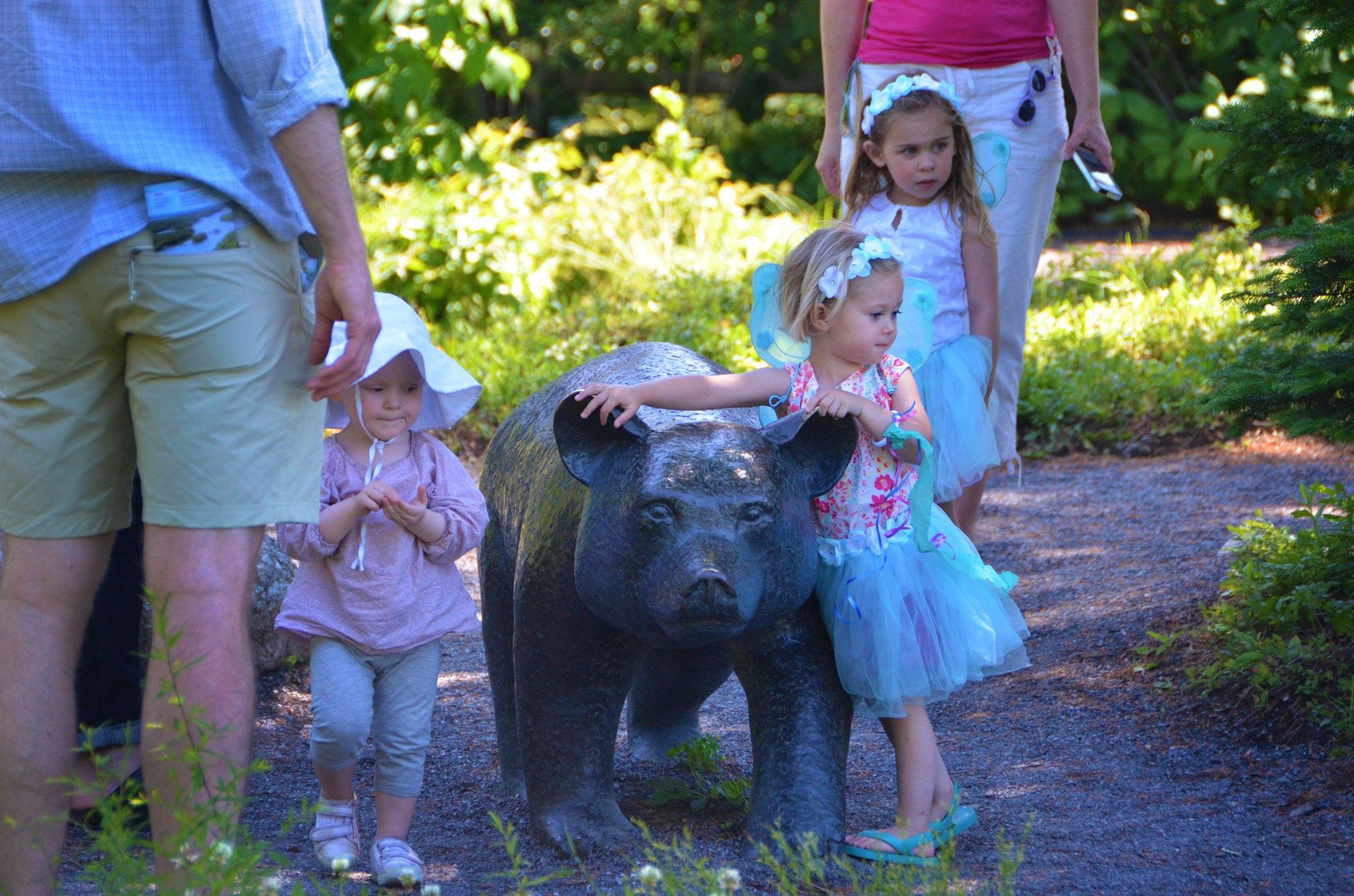 Fairies at Sals Bear