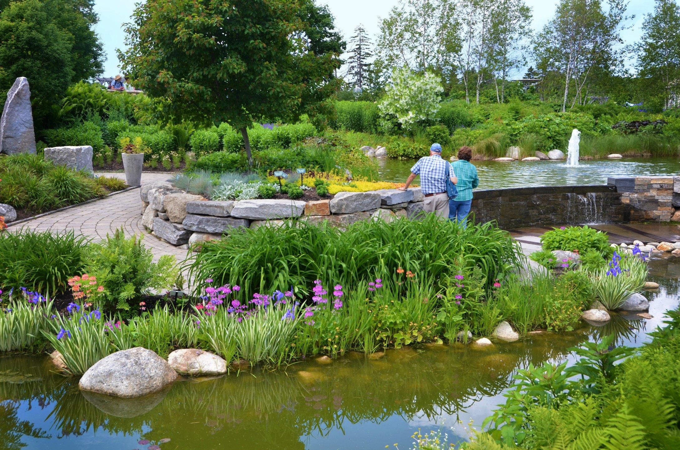 In the Lerner Garden