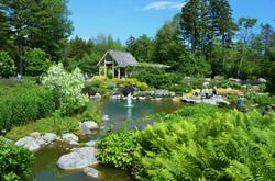 Lush Lerner Garden