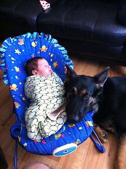 Female German Shepherd and Baby