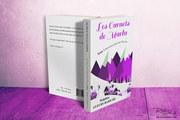couverture livre coverbook deauville pictographe aurelie rabillard normandie tourisme grap