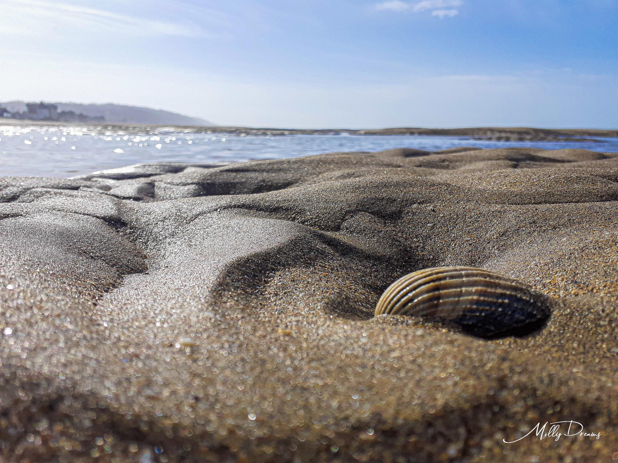 mer et plage en Normandie