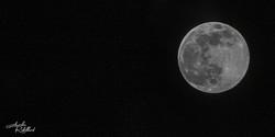 photographie en noir et blanc aurelie rabillard graphiste dans l'édition photgraphe lune