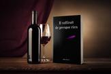 livres molly dreams auteure graphiste normandie villers sur mer amour différence d'age alcool alcoolisme (13)